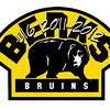 Bruins U16 : 6 galleries with 373 photos